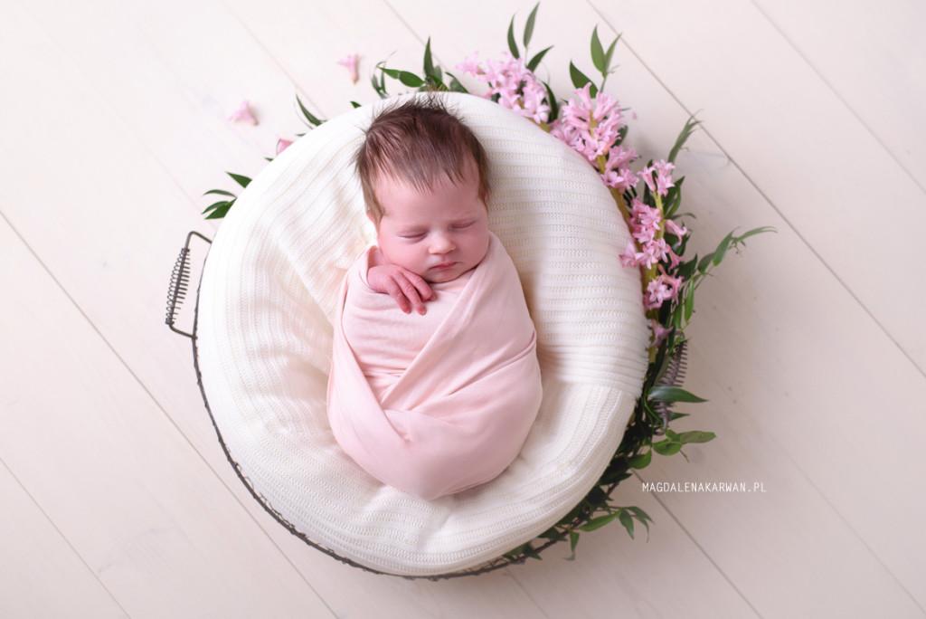 noworodek na sesji