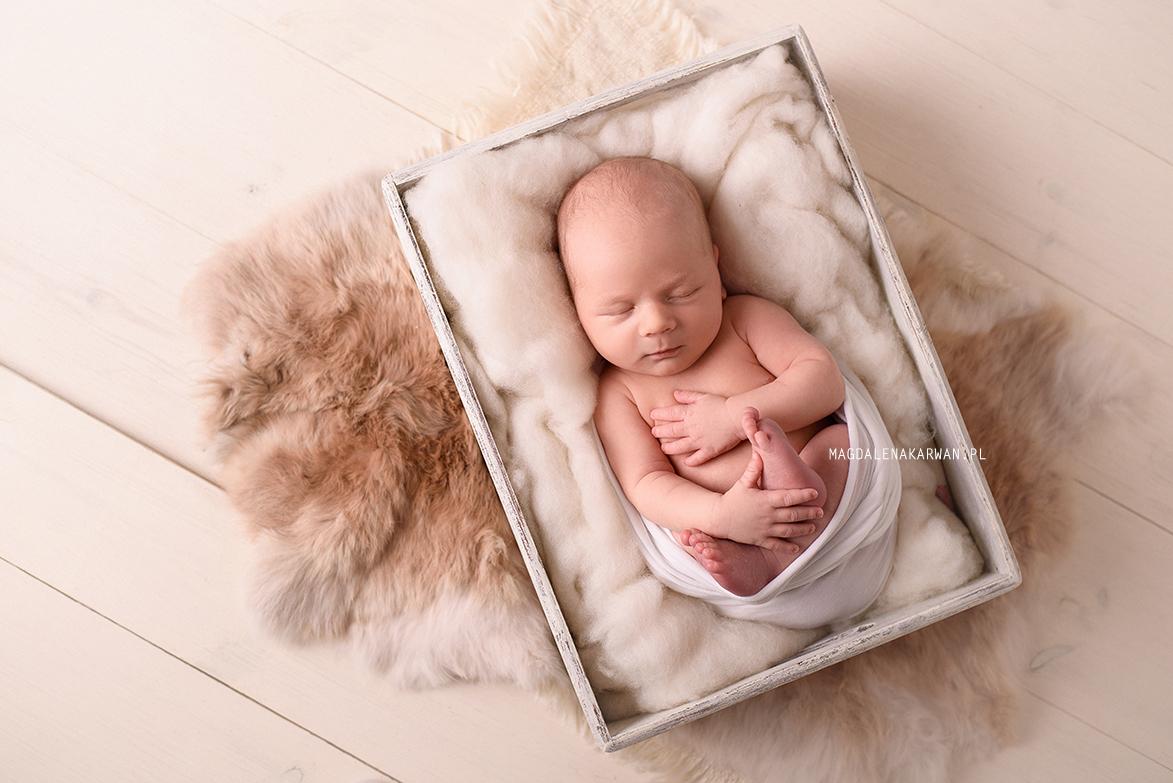 sesja noworodka katowice